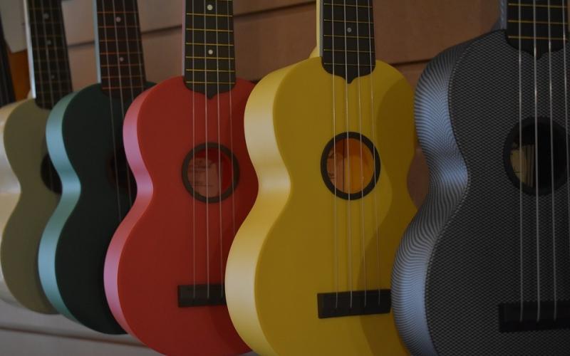 ukulele buddy reviews